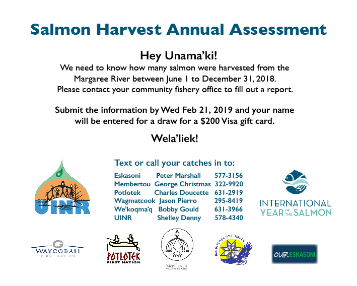 Annual Salmon Assessments